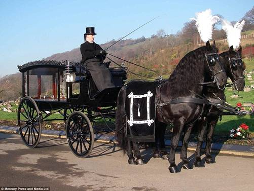 Source: http://www.dailymail.co.uk/news/article-3465705/Car-smashes-great-grandmother-s-funeral-cortege-kills-horse-pulling-coffin.html